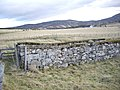 Dry stone walls of an old sheepfold - geograph.org.uk - 1051721.jpg