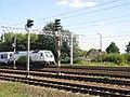 EU44-010 HUSARZ.JPG