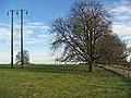 East of Bainton - geograph.org.uk - 110571.jpg