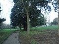 Easthill Park - geograph.org.uk - 1608350.jpg