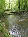 Eberbach en forêt de Haguenau 02.JPG