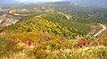Echoline autumn.jpg
