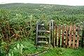 Edge of the National Park - geograph.org.uk - 1509877.jpg