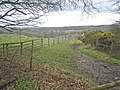 Edge of the forest - geograph.org.uk - 761045.jpg