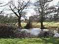 Edwin's Pond - geograph.org.uk - 129918.jpg