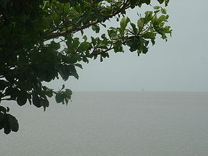 Wouri River - The estuary of the Wouri River