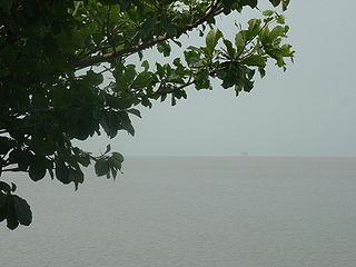 Wouri River river in Cameroon
