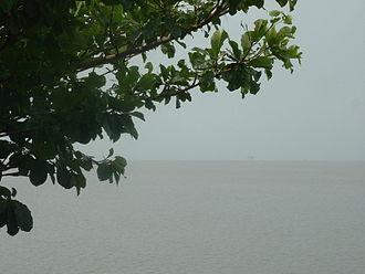 Wouri River - The estuary of the Wouri River