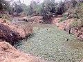 Encroachment on pond in Eastern U.P.jpg