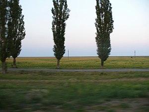 Ialomița County - Scenery near Țăndărei
