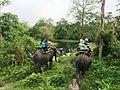 Entering Jaldapara National Park.jpg