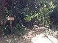 Entrada da Trilha do Cipó em Mococa.jpg