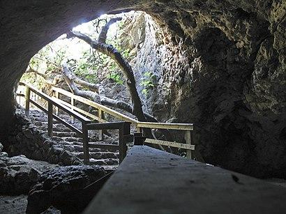איך מגיעים באמצעות תחבורה ציבורית  למערת התאומים? - מידע על המקום