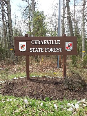 Cedarville State Forest - Entrance to Cedarville State Forest
