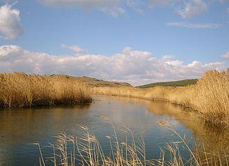 Myrina (Aeolis) - Ancient Myrina was located on the Beriki Tepe hill, on the left bank of the Pytikos River.