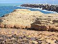 Escollera del puerto de Ras El Ma.jpg