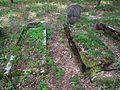 Evang. Cemetery in Niwka (Puszczykowo) (11).jpg