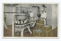 Every Bottle of Certified Milk is Capped and Sealed, Detroit Creamery Certified Milk Farm, near Mt. Clemens, Mich (NYPL b12647398-74600).tiff