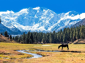 "Nanga Parbat - Nanga Parbat, viewed here from the Fairy Meadows, is nicknamed ""Killer Mountain"" for its high number of climber fatalities."