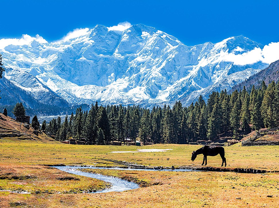 Fairy Meadows and the view of Nanga Parbat