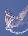Falcons 2 (3626067814).jpg