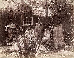 Māori whānau from Rotorua in the 1880s