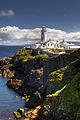 Fanad Head Lighthouse (2699889956).jpg