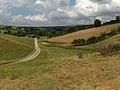 Farmland, Staffield - geograph.org.uk - 212986.jpg