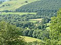 Farmland and woodland east of Tregaron, Ceredigion - geograph.org.uk - 910751.jpg