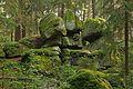 Felsgruppe Geyer-Steine 2016-07 NÖ-Naturdenkmal GD-074.jpg