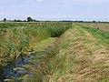 Fenland drain, Copalder, Benwick, Cambs - geograph.org.uk - 548239.jpg
