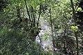 Feuchtgebiet Oberholz I 01.jpg