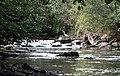 Fishing - Wattsville Caerphilly - geograph.org.uk - 1506851.jpg