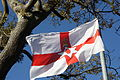 Flag, Spa, County Down, November 2010.JPG