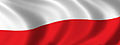 Flaga Polski - tło.jpg