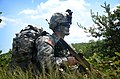 Flickr - DVIDSHUB - Air assault mission (Image 3 of 7).jpg
