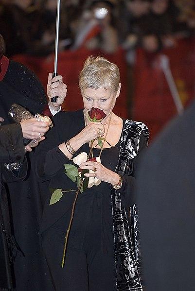 File:Flickr - Siebbi - A rose for Dame Judi Dench (1).jpg