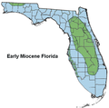 Florida Early Miocene.png