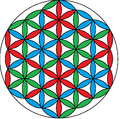 Flower of life 3-color-triangular.png
