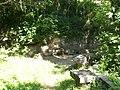 Font de la Granja (maig 2011) - panoramio.jpg