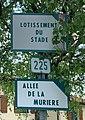 Footing de confinement 2020 - Allée de la Murière (Beynost) - panneau de rue.jpg