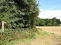 Footpath to Ouston Moor - geograph.org.uk - 617310.jpg
