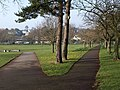 Fork in the path, Torre Abbey Meadows - geograph.org.uk - 1176035.jpg