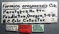Formica oregonensis casent0105755 label 1.jpg