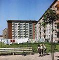 Fotothek df ps 0003044 Wohnhäuser ^ Wäsche ^ Wäscheleinen.jpg