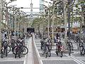 Frankfurt Zeil Fahrräder 751-h.jpg