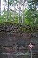 Froensbourg (35200868204).jpg