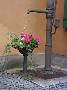 pompe bras jardin