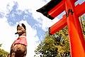 Fukakusa Yabunouchicho, Fushimi Ward, Kyoto, Kyoto Prefecture 612-0882, Japan - panoramio (10).jpg