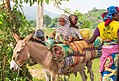 Fulani Nomads.jpg